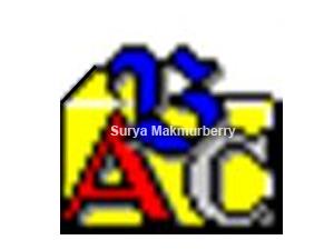 Abc amber blackberry converter